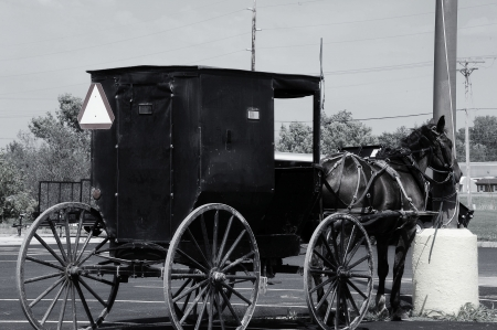 Old Tied to New - Amish Buggy Tied to Power Line in Wisconsin