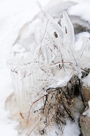 Spookachtige Ogen in Wisconsin River ijs op meer Petenwell