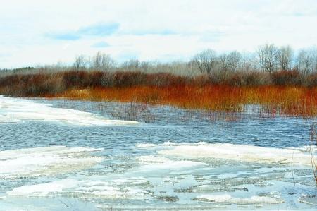 Bright Start To Spring naar Harvey s Vijver in Necedah Wildlife Refuge, Wisconsin Stockfoto