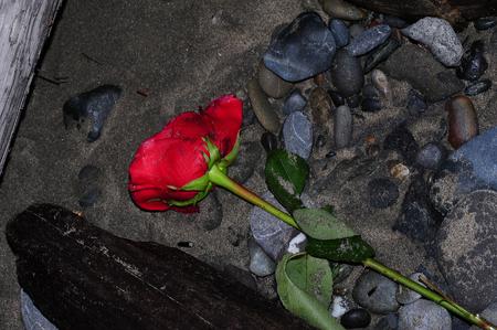 Verlaten Liefde op de kust van Oregon, USA