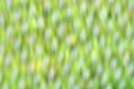 Background - Green - Yellow - White