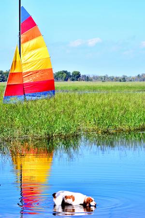 Sailing Reflections