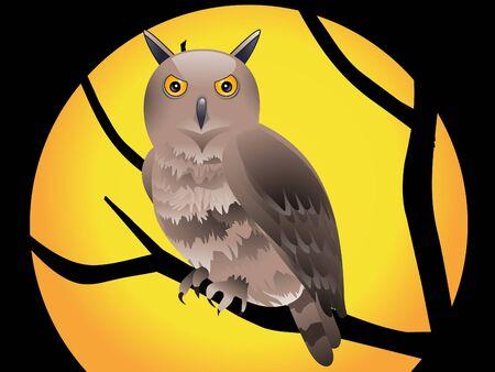 moon  owl  silhouette: abstract halloween wallpaper vector illustration