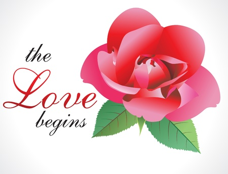 abstract love rose wallpaper vector illustration Vector