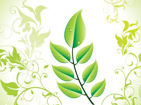 abstract green eco leaf  Vector