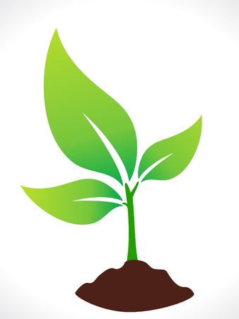 abstract eco green plant with soil vector illustration