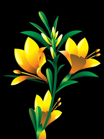 yellow oleander flower plant vector illustration Stock Vector - 9940882