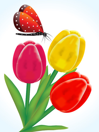 beautyful: abstract artistic colorful detailed tulip flowers vector illustration Illustration