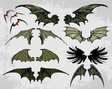 spread wings: Wings Illustration