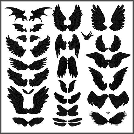 paloma caricatura: vector de conjunto de alas Vectores