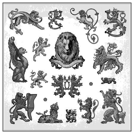 Heraldic lions 일러스트