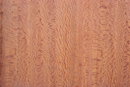 Close up on the old wooden texture background