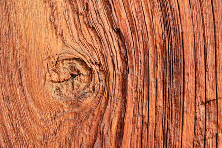Wood texture close up use for background Stock Photo