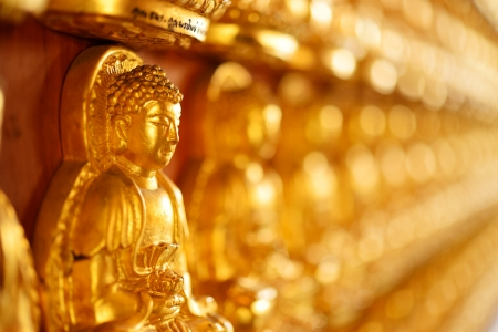 Beautiful buddha stature on the wall perspective view for background