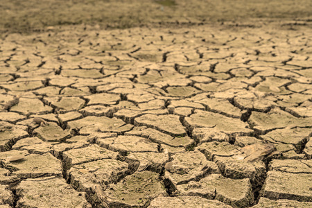 desertification: Crack soil in the canal for saving water concept Stock Photo