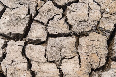 soil texture: Crack soil texture in the empty river