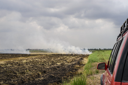 Flaming straw in the rice field; Global warming problem; Car in the burning rice field