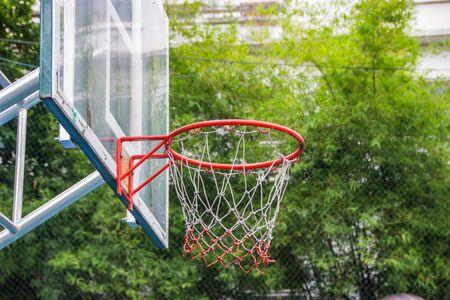 canestro basket: Basket cerchio nel parco con alberi verdi come sfondo.