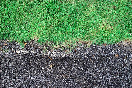 bedrock: Bedrock and Green grass ,texture background