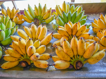 Cultivated banana, sold in the market ripe cultivated banana call Kluai Nam Wa in Thai.