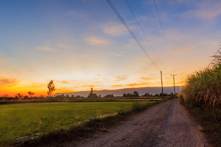 Beautiful view of the sunset in a field on a rural road, Thailand photo