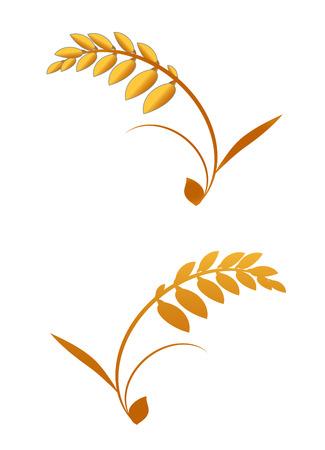 vector grass, golden leafs Stock Vector - 10783174