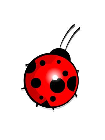mariquitas: Ladybird hermosa. Ilustración vectorial.