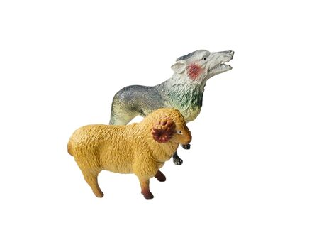Toy wolf and a sheep on a white background