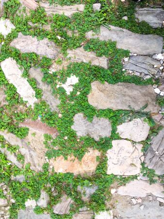 real stone wall without cement. stone road with grass. surface, background, texture