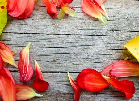 黄色のアプリコットの葉と木製のボード上のバラの花びら。テキストの場所