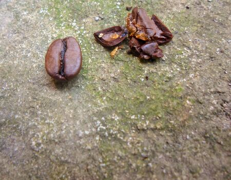 large grains of coffee on a concrete surface. broken and whole coffee beans. 2 grains, one broken Stok Fotoğraf - 133844021