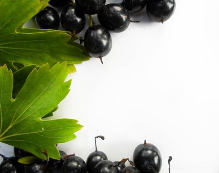 black currant and green leaves on a wooden background. Currant frame with space for text