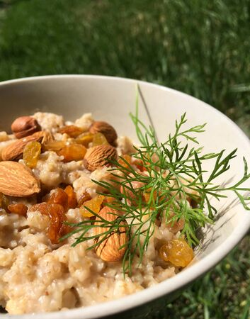 against a background of green grass lies a plate full of oatmeal with raisins and nuts