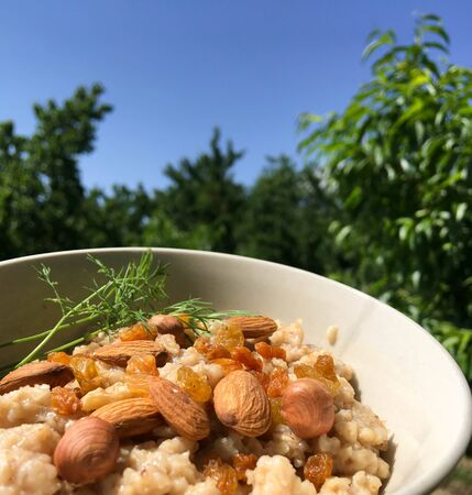 tasty oatmeal with raisins and nuts in a plate next to a background of green grass. healthy breakfast for every day