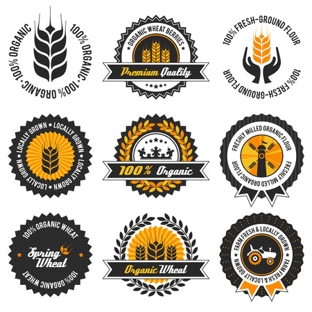 organic wheat label set with differently varied modern, vintage elements,  no transparencies, ideal for prints  Vector