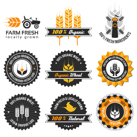 wheat production label set with differently varied modern, vintage elements, eps 8 , no transparencies, ideal for prints