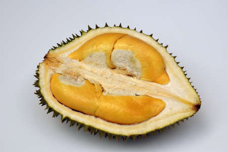 Durian on a white background Called Phuang Manee Is a durian species in Thailand Has a small, tasty flavor, yellow flesh