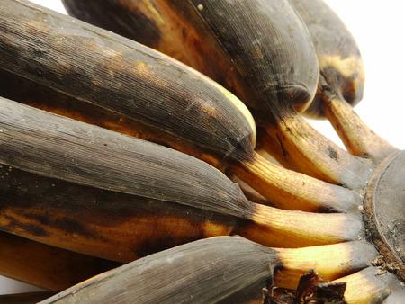 moulder: Overripe (rotten) bananas on white background. Stock Photo