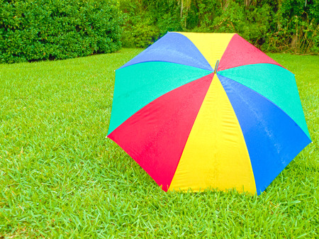 HDR photo of a wet umbrella in the rain on a lawn