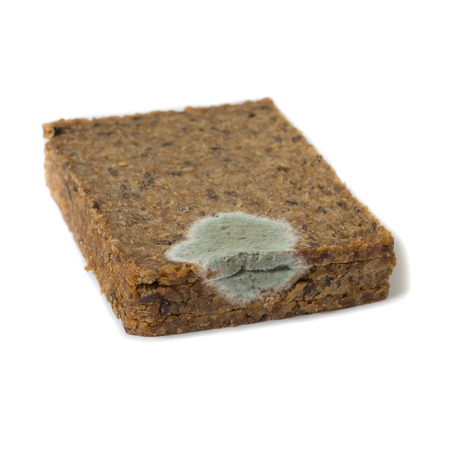 rudeness: Slice of bread covered with mold. Selective focus.