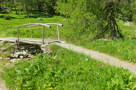 schweiz: Gorgeous meadow of wild flowers of the Swiss Alps in the Grisons. The path along the field leads to a wooden bridge over a small lake and creek. Bright summer day.