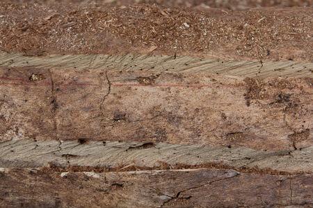 Wooden Cut Textured Stock Photo