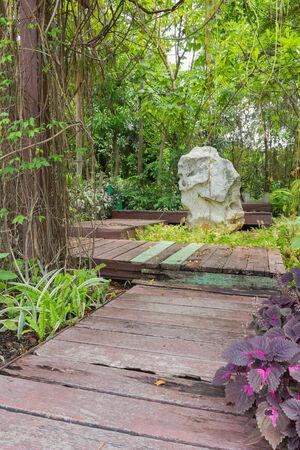 Pathway to garden Wood floor