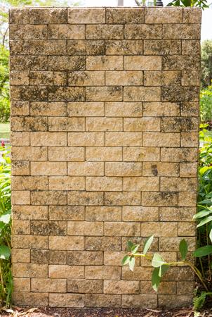 brick wall background In Garden background