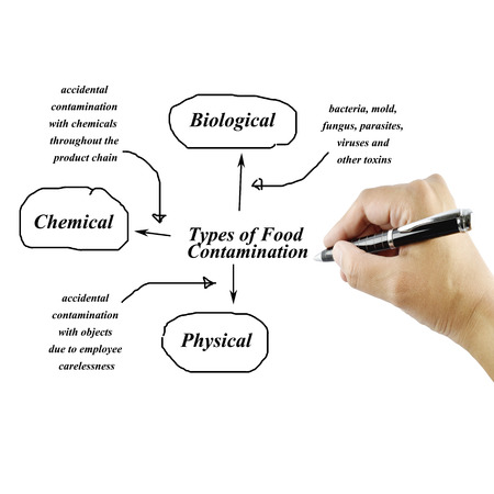 Types of food contamination image for use in manufacturing(Training and presentation )