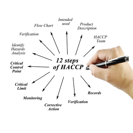 principle: element of twelve step HACCP principle on white background for used in manufacturing. Stock Photo