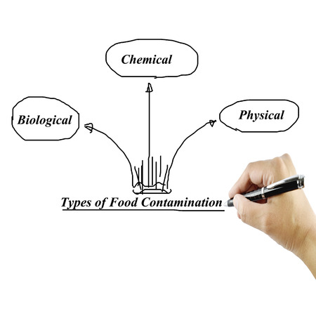 contaminate: Types of food contamination image for use in manufacturingTraining and presentation