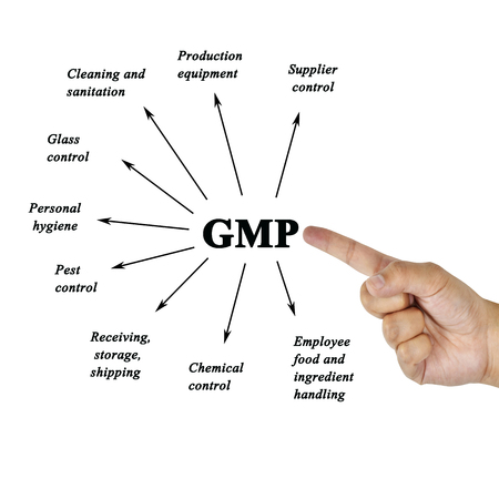 audits: Women hand writing components of GMP(Good Manufacturing Practices) for use in manufacturing(Training and Presentation)