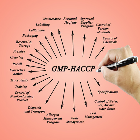 traceability: Women hand writing element  GMP-HACCP for use in manufacturing (Training and Presentation) Stock Photo