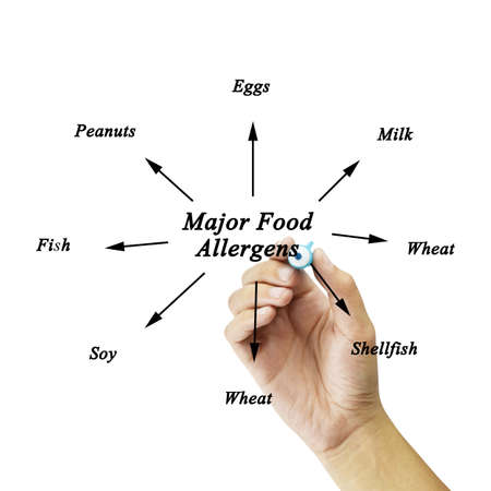 allergens: Women hand writing element of major food allergens Milk, Eggs, Fish,shellfish, Tree nuts, Peanuts, Wheat, Soybeans for use in manufacturing for Training and Presentation Stock Photo